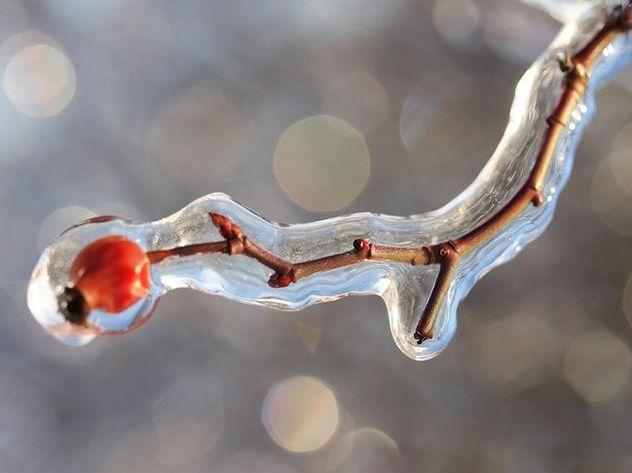 7февраля вТульской области похолодает доминус 26°C— МЧС
