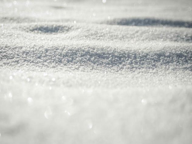 В столице России идет аномальный для мая снегопад