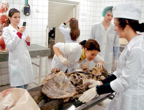Для студентов-медиков препарирование мумифицированных трупов (специально обработанных для многолетней службы в качестве учебного пособия) превращается в настоящее развлечение