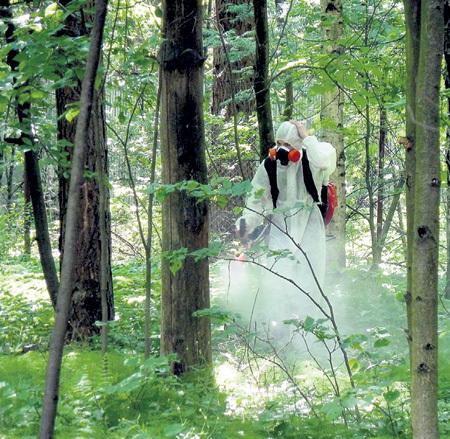 После травли комаров химикатами погибают многие виды насекомых и птиц. Такая экокатастрофа произошла в Норвегии. Фото: klopstop.ru