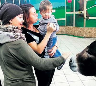 ...в октябре она гуляла по зоопарку с сыном и сестрой... Фото: Instagram.com
