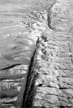 РАЗЛОМ САН - АНДРЕА: самое тонкое место земной коры со спутника выглядит так же, как под лупой растяжки на животиках беременных женщин