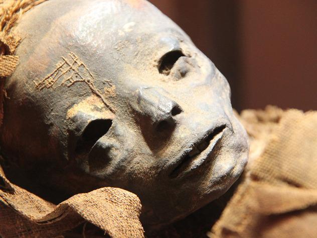 Путаница вЭрмитаже: мумия эстрадной певицы оказалась кастрированным жрецом