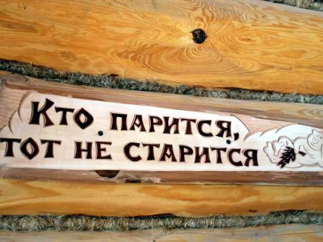 ВНижнем Новгороде пьяная компания разгромила сауну